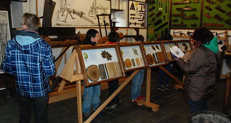 Programación para escolares en el Museo